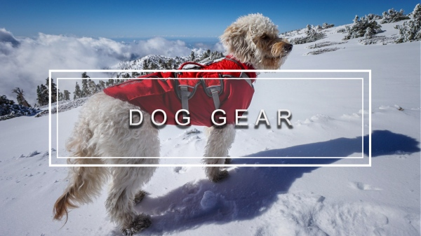Trail To Peak Gear Reviews Dog Gear