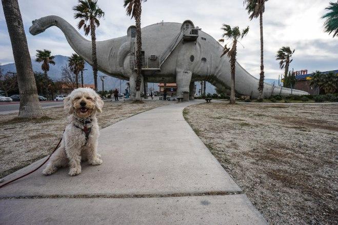 Isla with the Brontosaurus