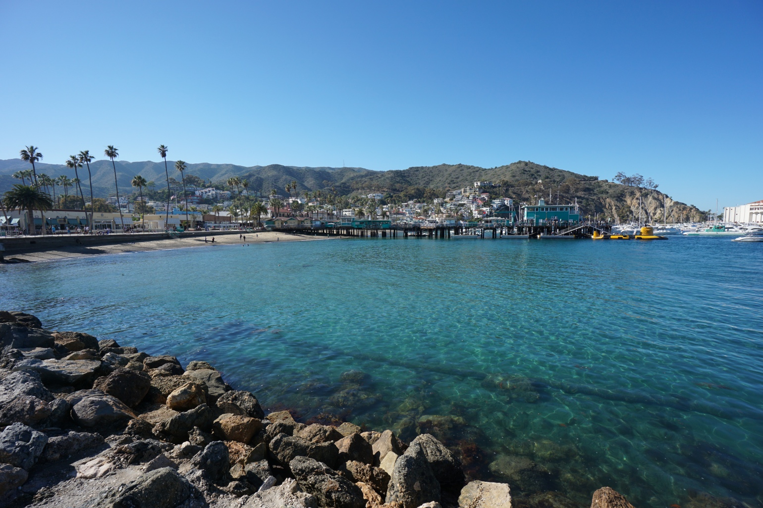 Backpacking The Trans-Catalina Trail Catalina Island Avalon Two Harbors Little Harbor