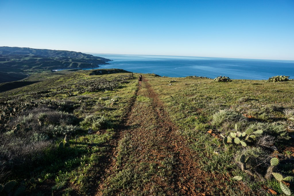 Backpacking Trans-Catalina Trail