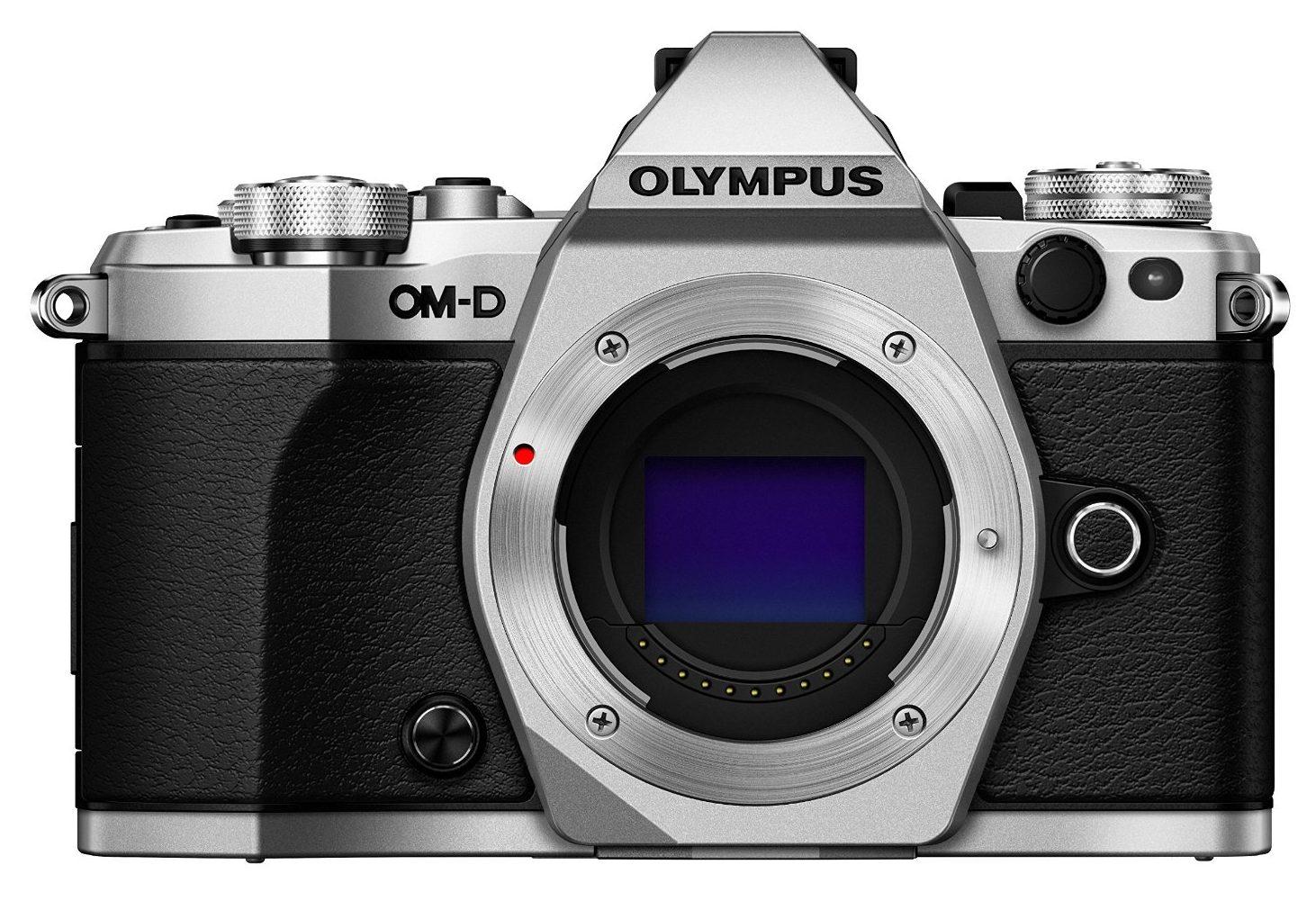 Best Travel Lens For Olympus Om D E M