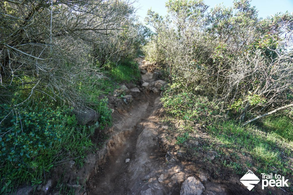 Hiking The 5 Peak Challenge Of Mission Trails Regional Park