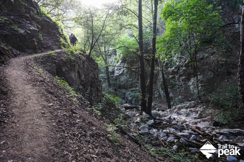 Hiking Mt Wilson Trail via Chantry Flat Sturtevant Falls Mt. Zion