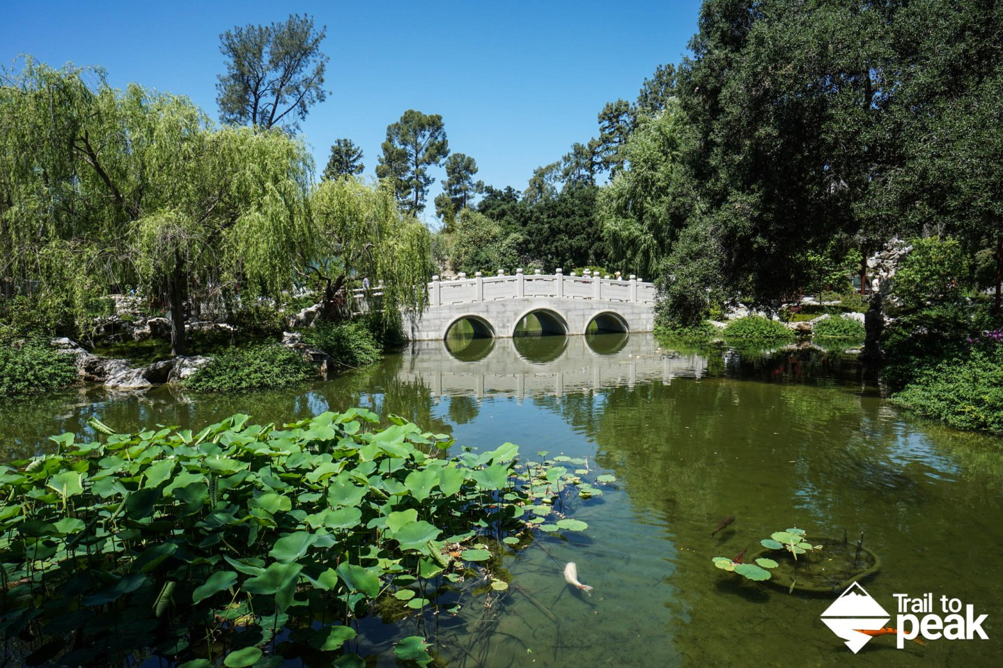 A Guide To The Huntington Botanical Gardens, Library, And Art Collections